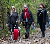 3 mensen in halloweensfeer en kleding in het bos